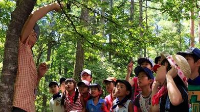 富士山の森が小学校