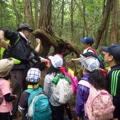 <要申し込み>富士山の森が小学校参加者募集中!